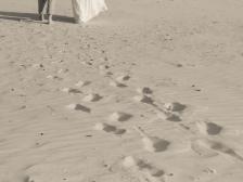 weddings-154